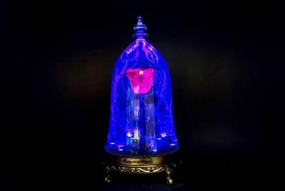 今年情人節最浪漫的禮物!超夢幻《美女與野獸》魔法玫瑰藍芽喇叭