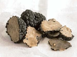 讓人為之著迷的黑鑽石「黑松露」