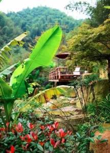 為一個姑娘,整整10年,他把30畝荒地打造成夢想家園,我終於懂得了真愛的意義