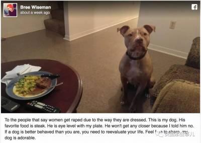 穿得少就活該被強姦!妹子用自己狗狗的故事,把他們懟得無話可說...