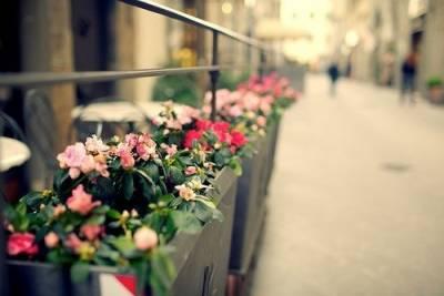 他若愛你,不必討好 世界是公平的,忘記一份回憶,你就會懂得一份珍惜。