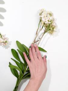今夏最流行的5款「指尖盆栽」~乾燥花 森林糖果屋和3D小瓢蟲,打造療癒又可愛的行動花園!