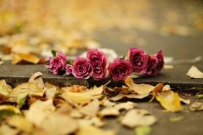 妳美麗的臉卻被鑲在了冷冷的墓碑上...