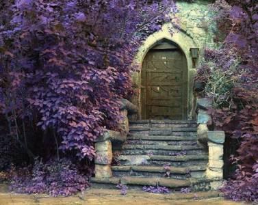 世界各地的美麗大門