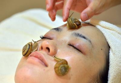 日本髮廊用活蝸牛美容:粘液可治療受損皮膚