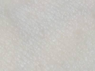 好了解肌膚生態的~童顏美肌 益生菌舒敏水潤精華液