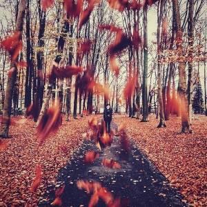 最痛的,不是離別,而是離別後的回憶