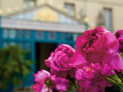 繁花競豔的璀璨國度-Piaget伯爵的玫瑰園