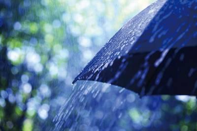 Rainy Season 梅雨季 雨下再大也時尚