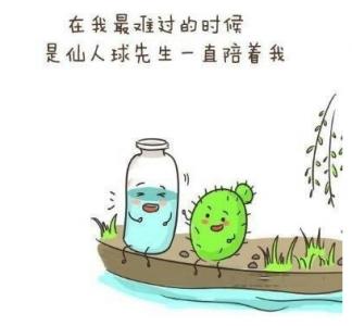 【感人漫畫,萬人瘋轉】裝滿「感情」的瓶子