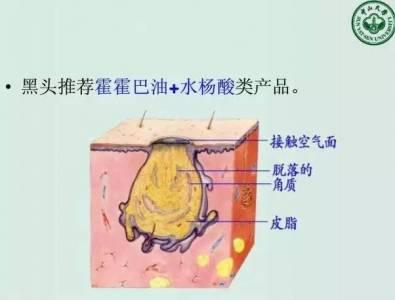 瘋傳!一位醫學院的教授「教護膚用的PPT」三日內被分享了上萬次!還被譽為女性聖典!