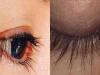 只要用「這招」,不出一個月,睫毛「迅速增長5mm」變得超濃密!再也不用接睫毛了!